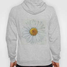 Watercolor Daisy Hoody