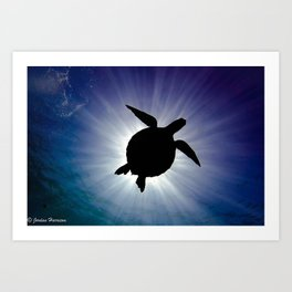 Sea Turtle Eclipse Art Print