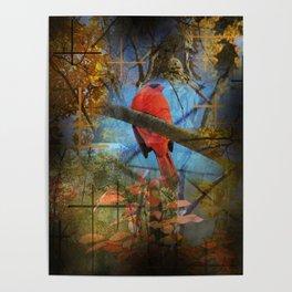 A Cardinals land Poster