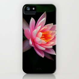 Birth of Beauty iPhone Case
