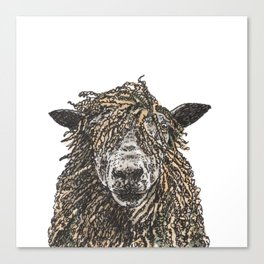 Cotswold Sheep Canvas Print