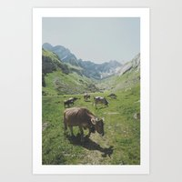 cows Art Prints featuring cows by remo