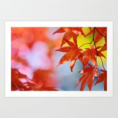 Autumn blush Art Print