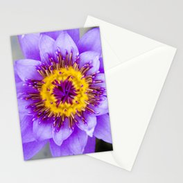 Blue Lotus Close Perspective Stationery Cards