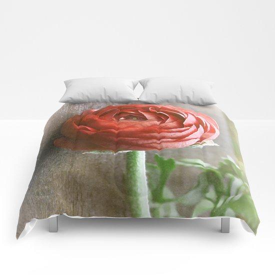 Vintage Ranunculus(2). Comforters