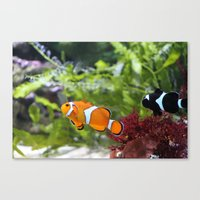 finding nemo Canvas Prints featuring Finding Nemo! by Becky Dix
