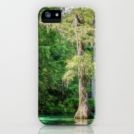 Florida Cypress Tree and Spring iPhone Case