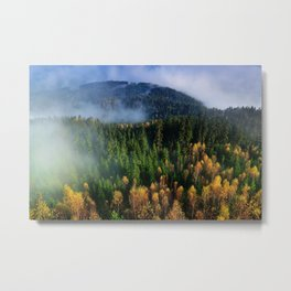 Hovering Over Autumn Forest Metal Print