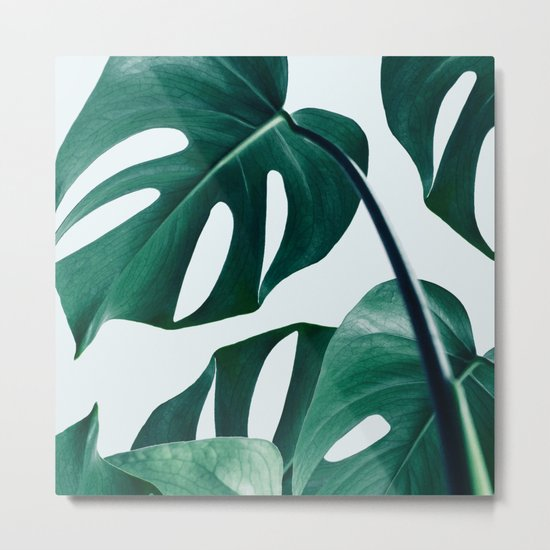 Monstera #society6 #artprints #buyart Metal Print