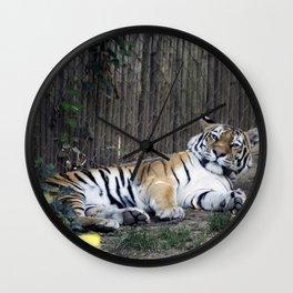 Philadelphia Zoo Series 10 Wall Clock