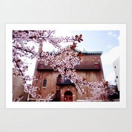 Cherry Blossoms and Chapels Art Print