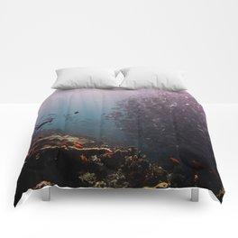 Summer School Comforters