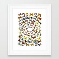 butterflies Framed Art Prints featuring Butterflies by Ben Giles