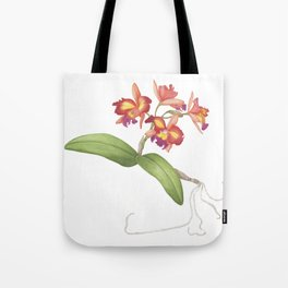 Red Orange Orchid Tote Bag