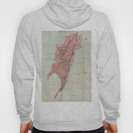 Vintage Map of Bombay India (1895) Hoody