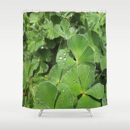 Green Clovers Shower Curtain
