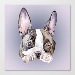 Boston Terrier Dog Watercolor Painting Canvas Print