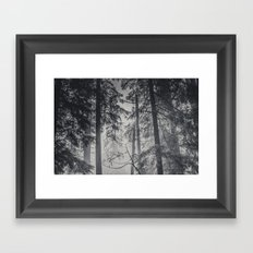 Nature Forest - Black and White Trees in Winter Framed Art Print