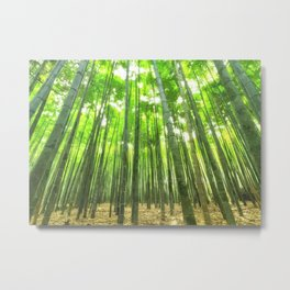 Bamboo Forest Illustration Metal Print