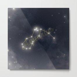 Aquarius Constellation - Zodiac Metal Print