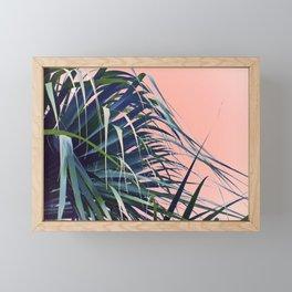 Feather Palm Framed Mini Art Print