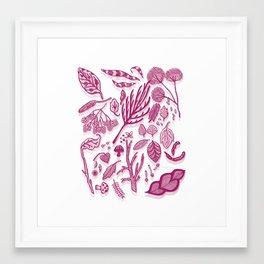 Botanicals Framed Art Print