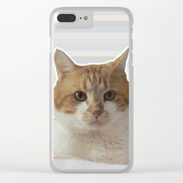 Red cat on a striped background. Clear iPhone Case