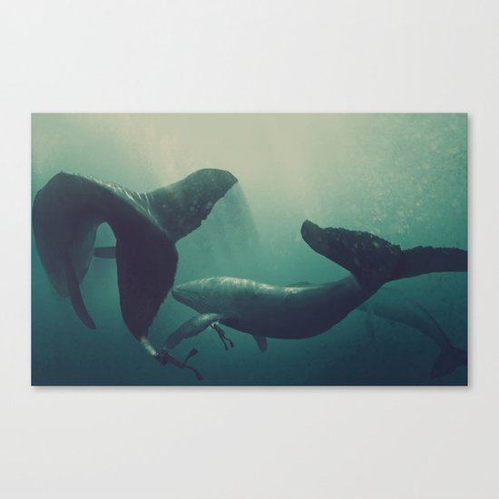 Swimming with whales Canvas Print