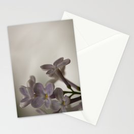 Lilac Morning Stationery Cards