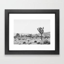 Joshua Tree Monochrome, No. 1 Framed Art Print