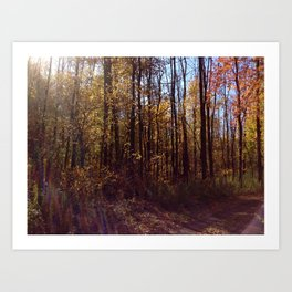 Upstate New York in the Fall 2 Art Print