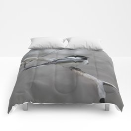 Black-capped Chickadee Comforters