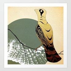 Aves Art Print