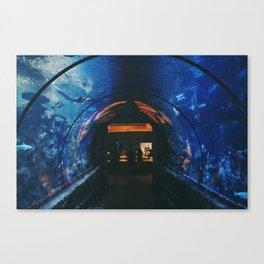 Mandalay Bay Casino and Aquarium Canvas Print