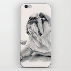 iPug iPhone & iPod Skin