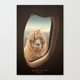 QUÈ PASA? NEVER STOP EXPLORING Canvas Print
