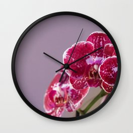 Petechial orchids Wall Clock