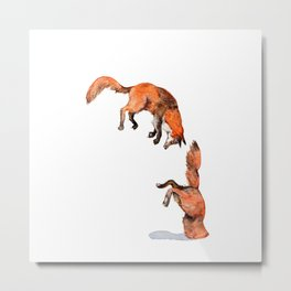 Jumping Red Fox Metal Print