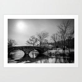 Clove Lakes Rock Bridge Art Print
