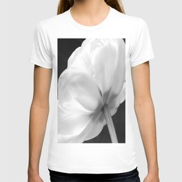 Close-up of white tulip in black background T-shirt