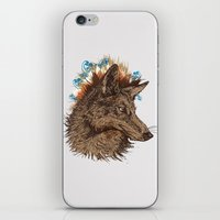 coyote iPhone & iPod Skins featuring coyote by youareconstance