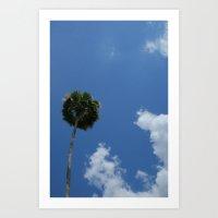 Lonely Palm Art Print