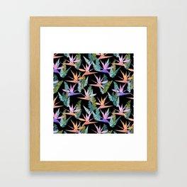 Birdie Tropical Black Framed Art Print