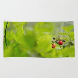 Raspberry Sunrise Beach Towel