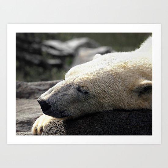 A polar bears' sweet dreams Art Print