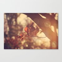 stay gold Canvas Prints featuring Stay Gold by Oh, Good Gracious!