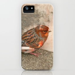 Lovely runaway canary bird iPhone Case