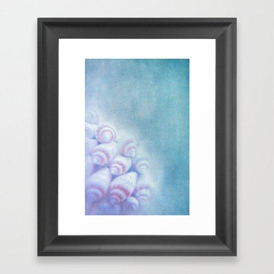 BELLA BLEU - Still life with sea shells Framed Art Print