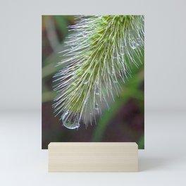 glass bubbles #soceity6 #decor #buyart Mini Art Print