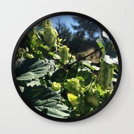 Beer Hops  Wall Clock